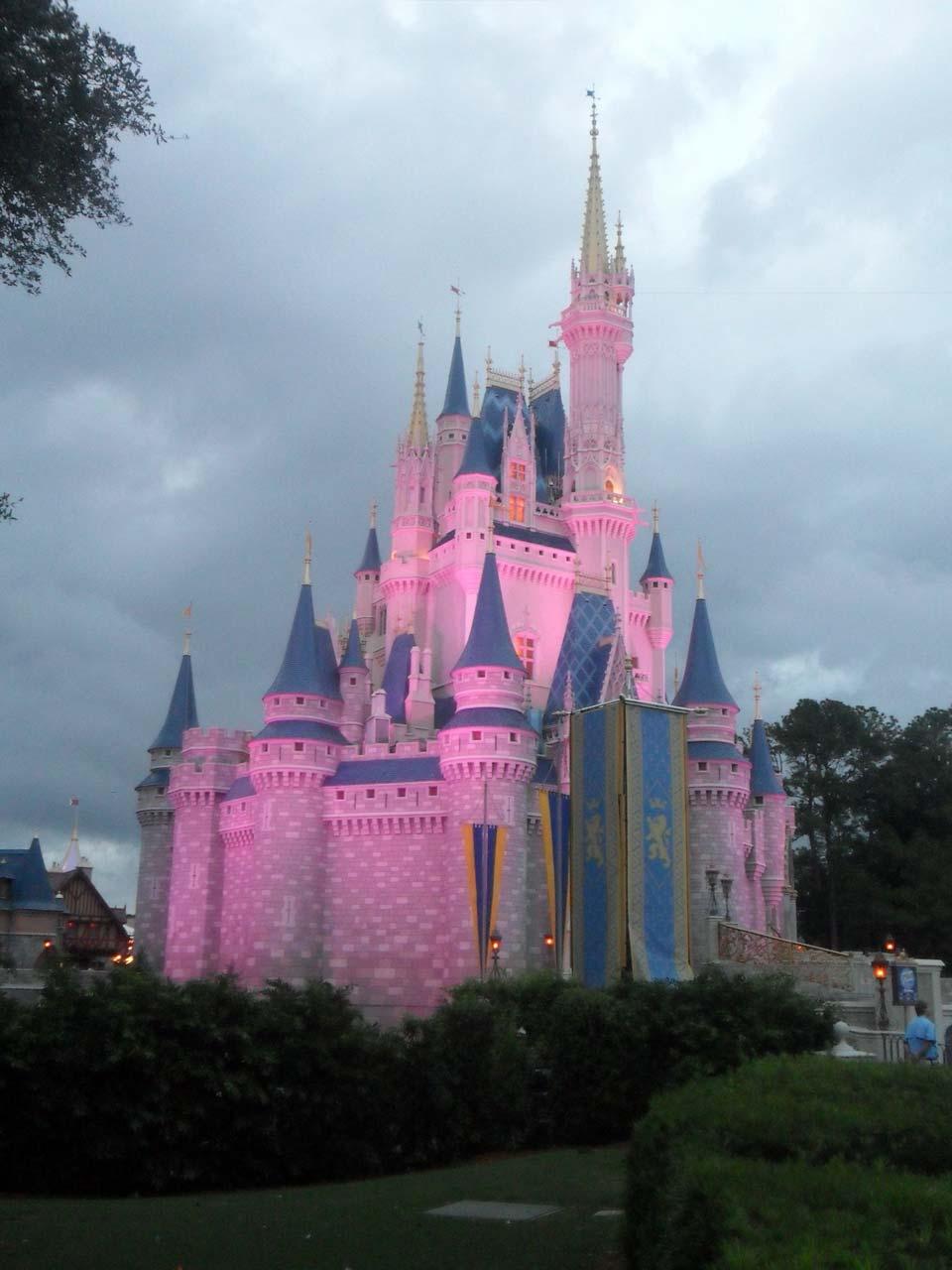 Disney kalesi