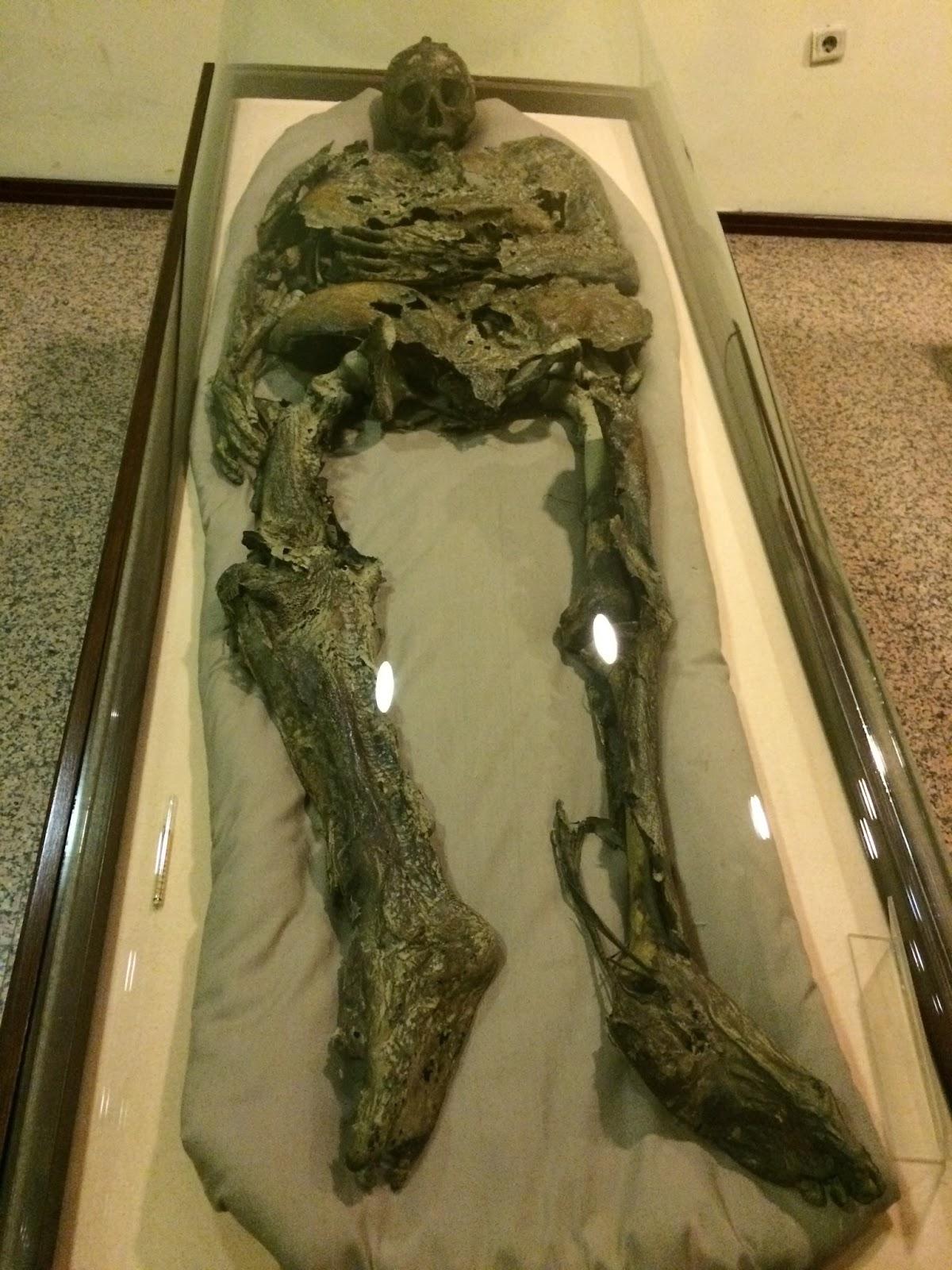 mumya muzesi